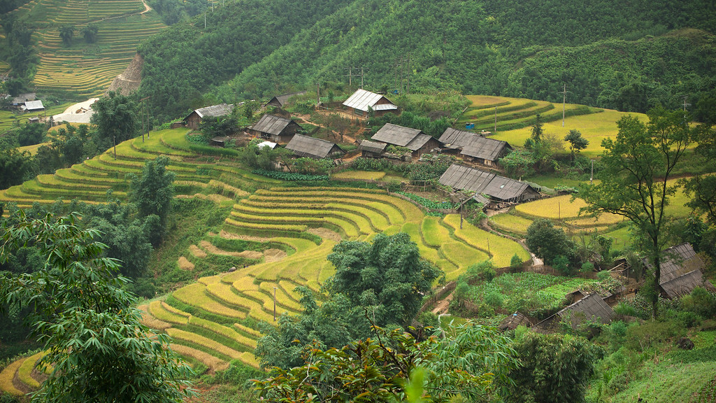 Lao Chải Village
