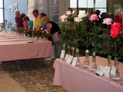 Eastern NC Rose Society May 8