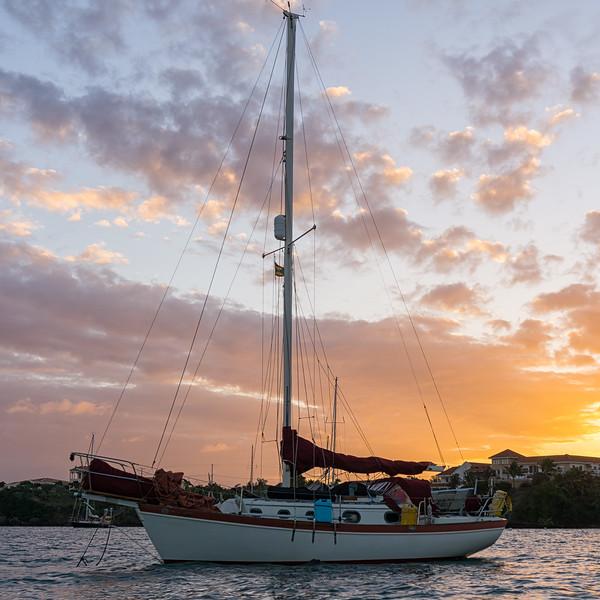 prickly bay sunset