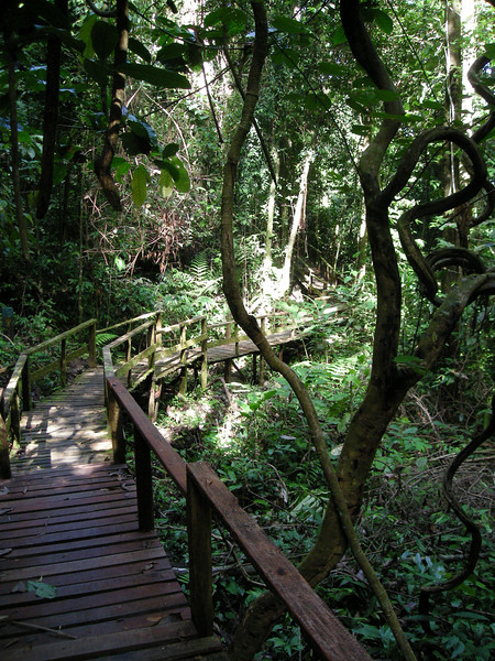 wooden boardwalks and stairs eased the hiking along much of the trail