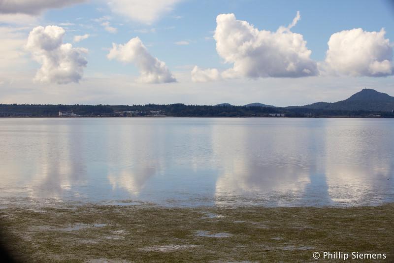 Looking across Padilla Bay