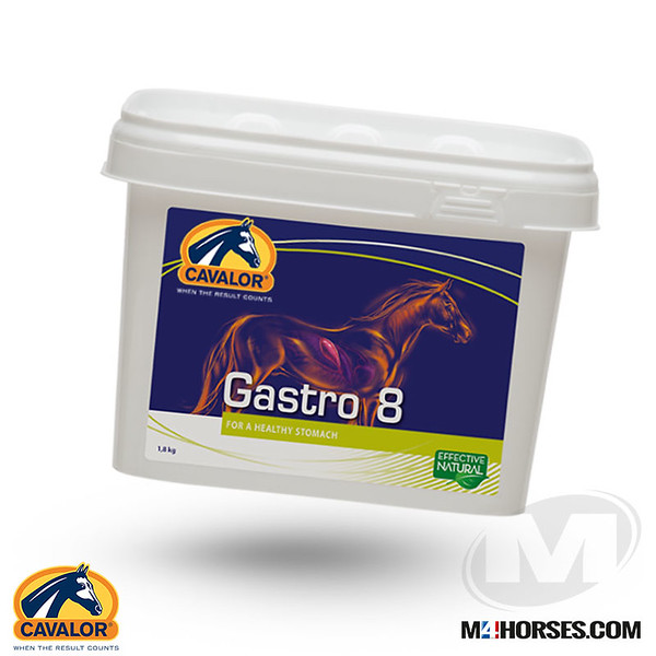 Gastro8.jpg