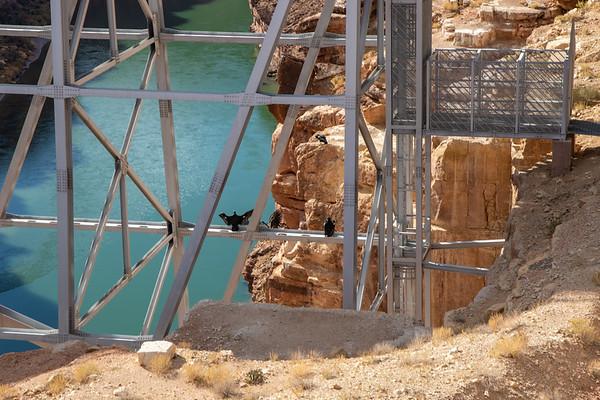 2020-11-08 Navajo Bridge