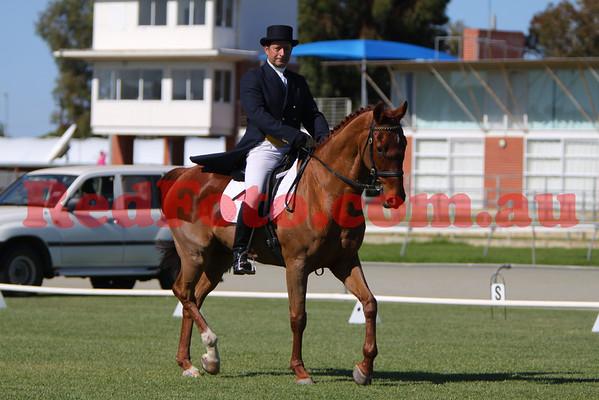 2009 05 03 Narrogin ODE Dressage All Arenas 10:50 till 11:54