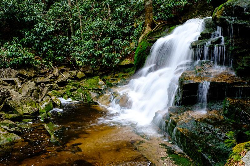 20180504-05 Blackwater Falls State Park 032.jpg