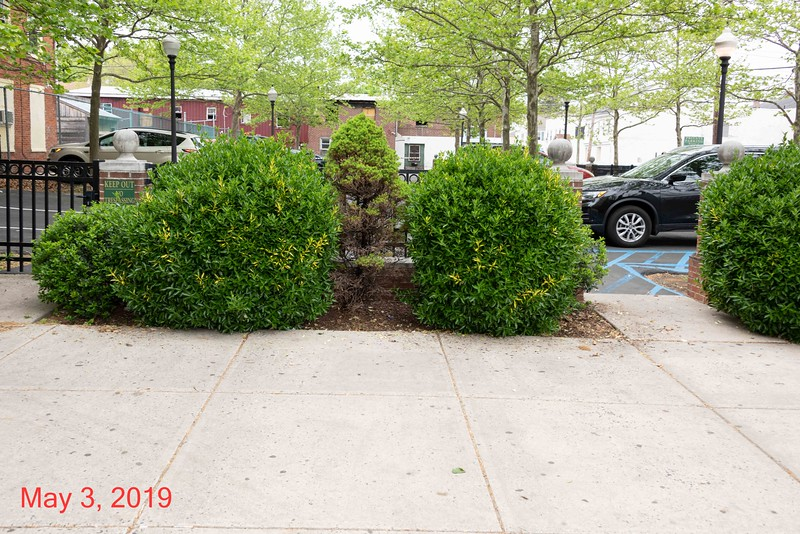2019-05-03-441 to 449 E High & Parking Lot-042.jpg