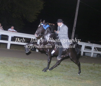 CLASS 34  OPEN STAKE  - CANTER