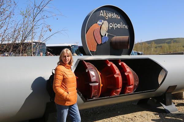 Alaska pipeline, Fairbanks, Alaska - May, 2014