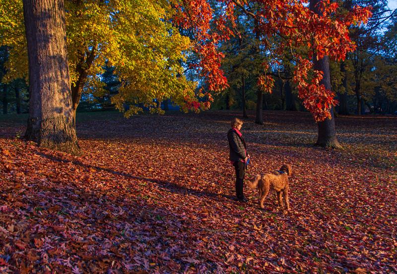 Wingfoot-Lake-Fall-Dawn-Calvin.jpg