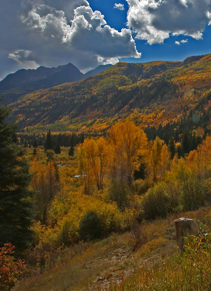 Colorado Fall Colors. September 2008