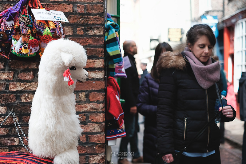 CHRISHARRISONPHOTO- STREET-MARCH-24-2018-YORK-3371.jpg
