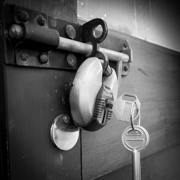 lockdown by Cathy Warne.jpg