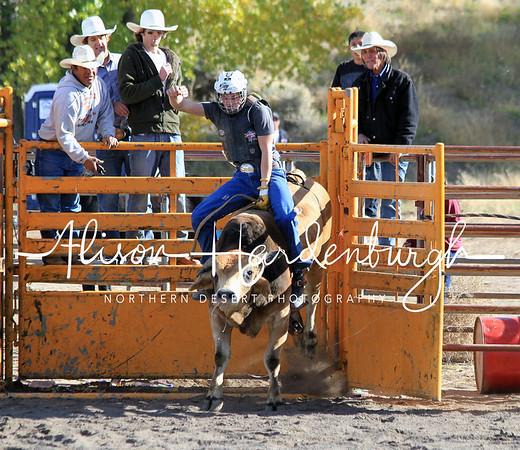 Practice Bulls ~ Sunday