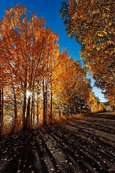 Colorado Utah Wyoming