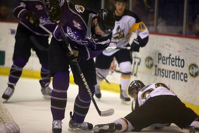 ECHL 2013 Playoff Finals