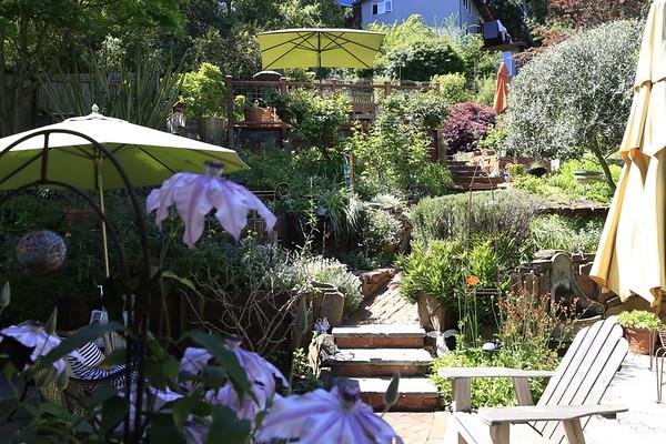 Lynn's Garden April 2020