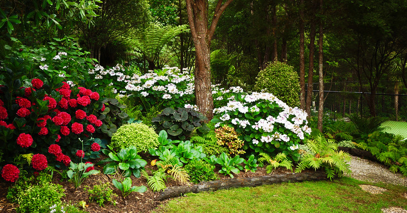 Omaio Private Garden, north of Auckland