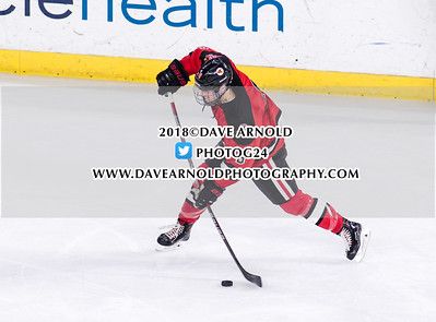 3/14/2018 - Boys Varsity Hockey - Pope Francis vs Hingham