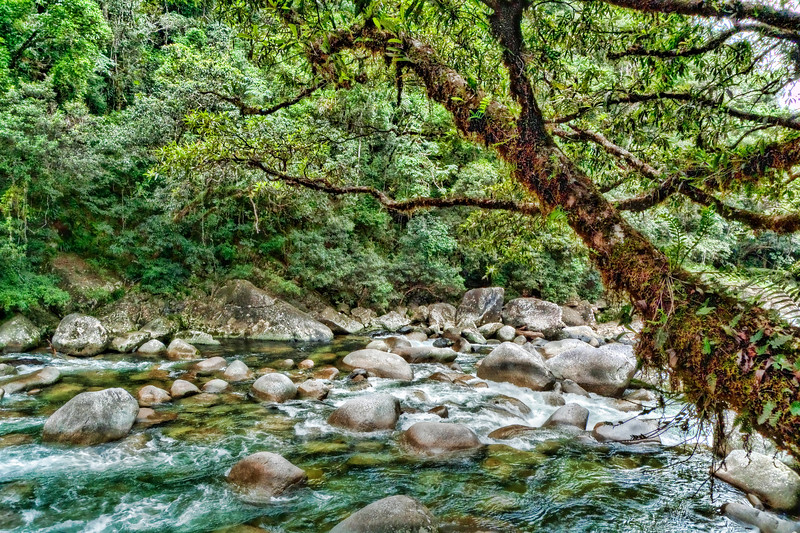 Mossman River at Mossman Gorge 3.jpg