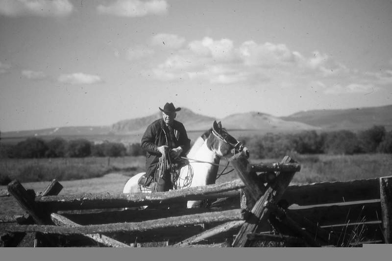 Impa on horse behind fence.jpg