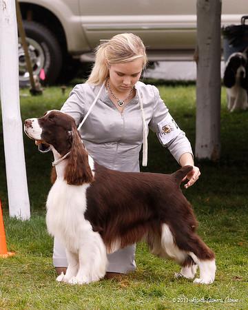 Dog Classes-Regular 2011