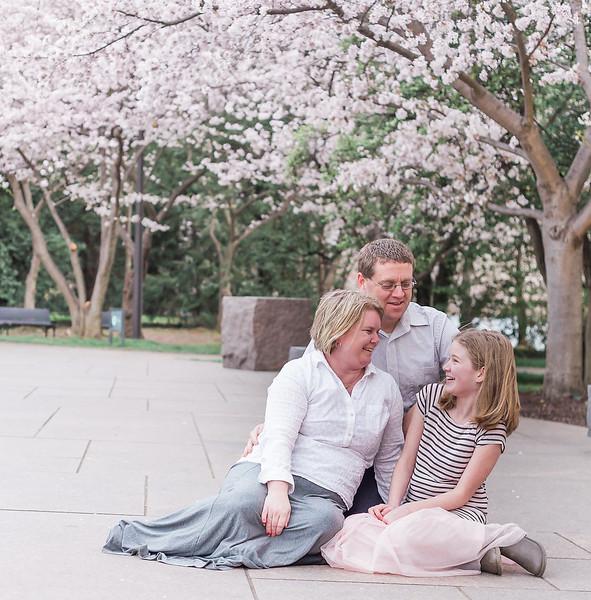 CherryBlossom-32.jpg