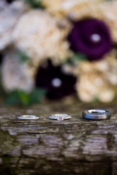 DICKERSON_WEDDING--9794.jpg