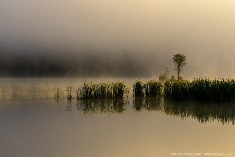 Kent Pond-7.jpg