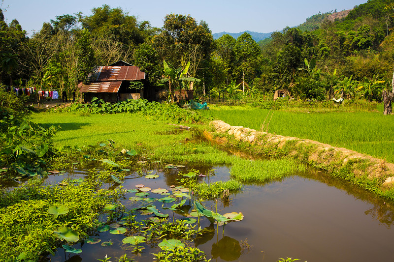 Vietnam-199.jpg