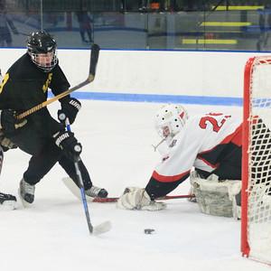 11/2019 RHS Alumni Hockey Game