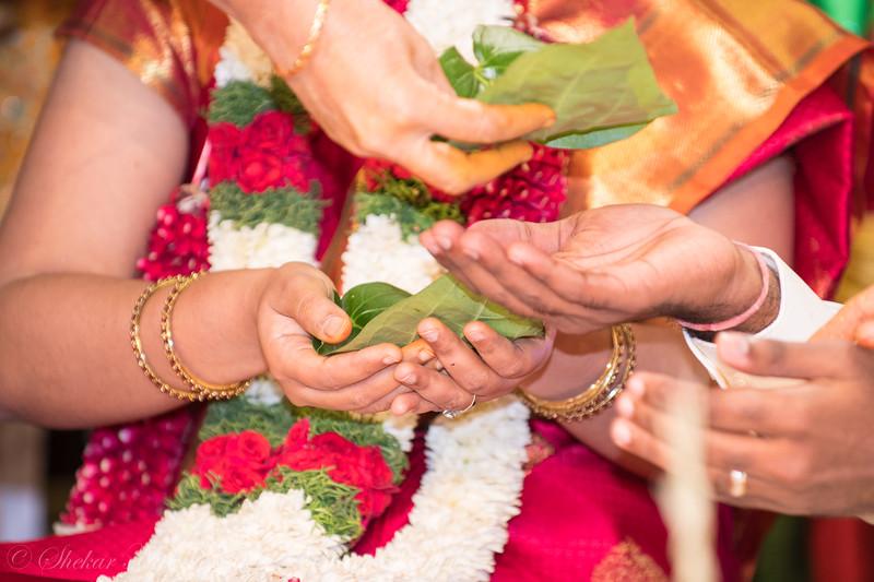 Sriram-Manasa-228.jpg