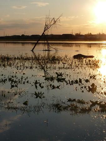 The Rising Saskatchewan River