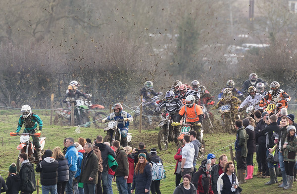 Wild and Woolly 2015