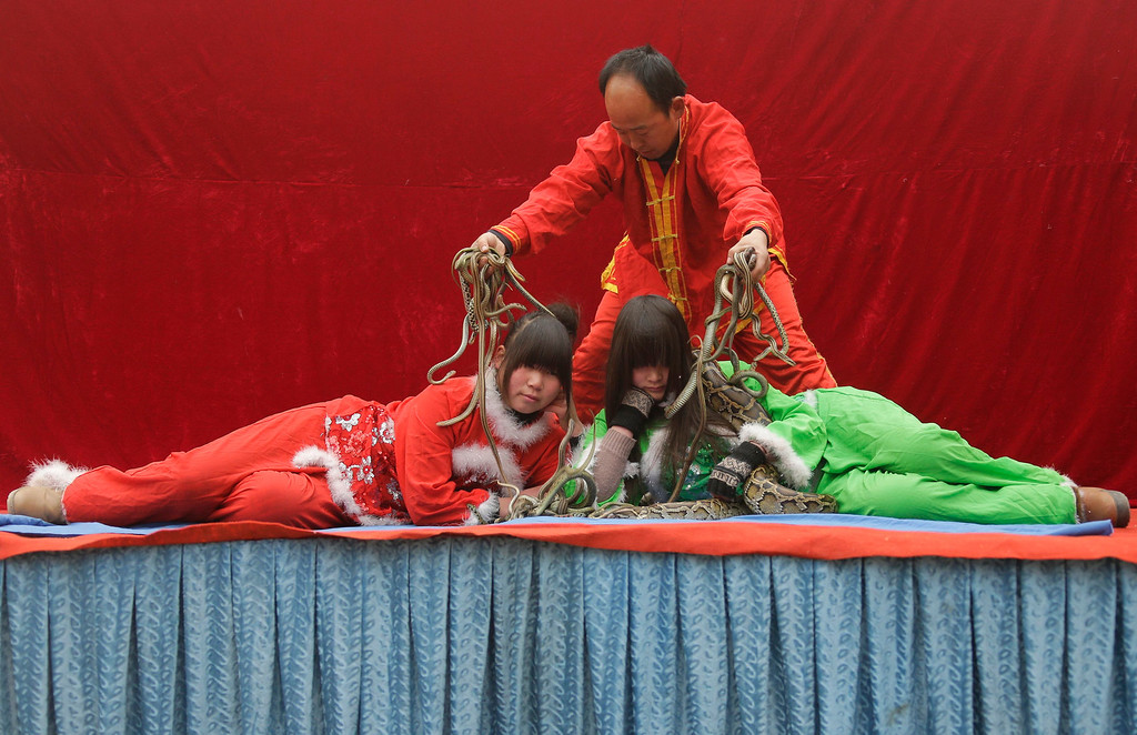. Performers put on a show using a python and snakes at the Ditan Temple Fair celebrating the Chinese Lunar New Year in Beijing February 11, 2013.REUTERS/Jason Lee