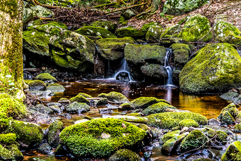 plateau water.JPG
