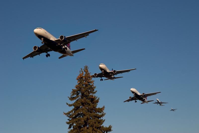 Landing party 3.jpg