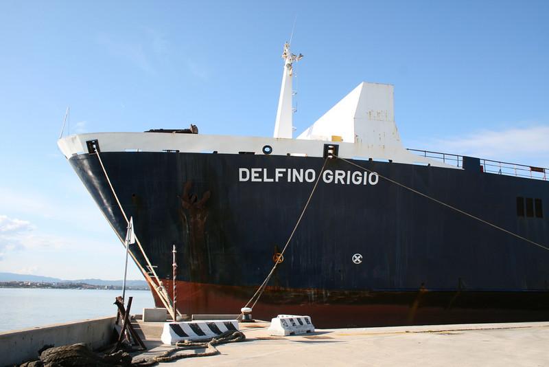 M/S DELFINO GRIGIO in Olbia.