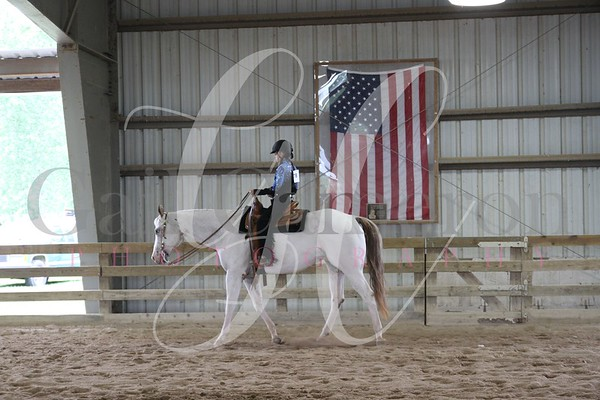 Horseless Horse Horsemanship 3 - 5