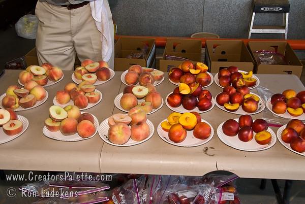 Peach & Nectarine Evaluation