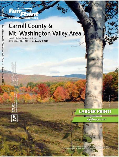 Carroll County Cover.jpg