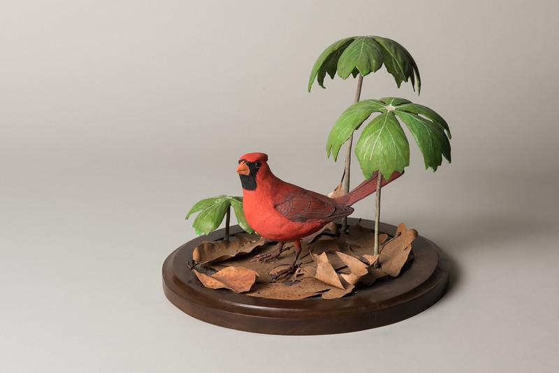 Still Life Dan Holman Birds (9 of 50).jpg
