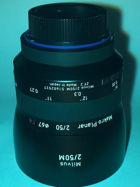 IMG_0447.MP4