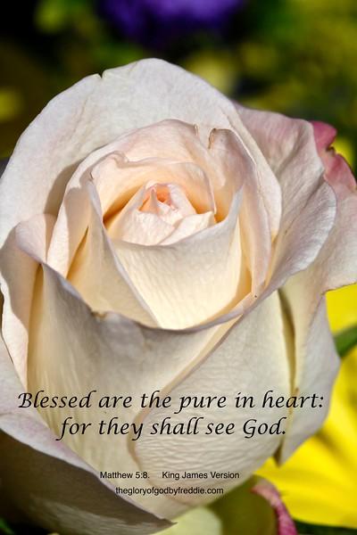 Matthew 5-8 b .jpg