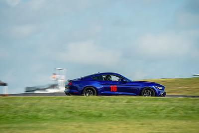 16 Blue Mustang