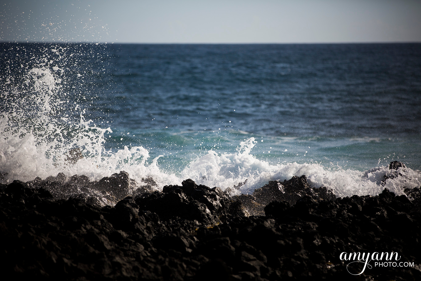 hawaii_amyannphoto_28