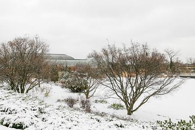 031317 Snow