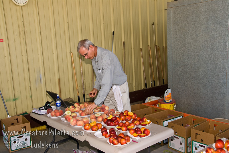 Peach and Nectarine evaluation 6-14-2008 with Dr. David H. Byrne from Texas A & M University