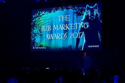 B2B Marketing Awards 2017