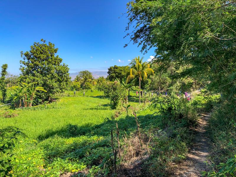 iPhone_Haiti--8.jpg
