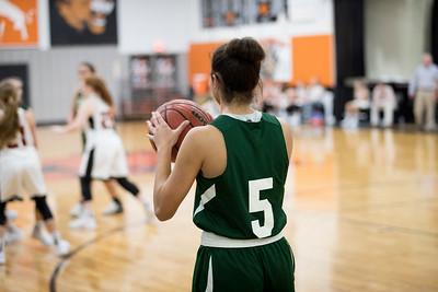 Lee Academy Basketball 2018-2019